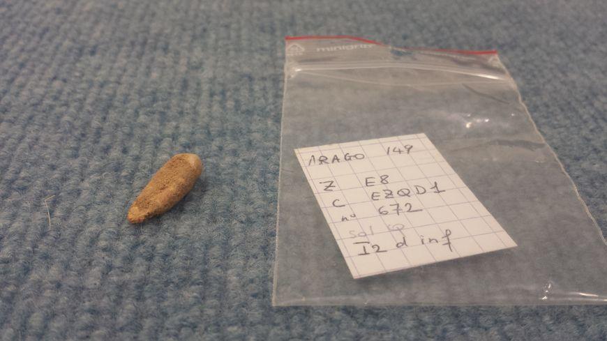 Cette incisive est le 149ème fragment humain retrouvé dans la grotte de Tautavel.
