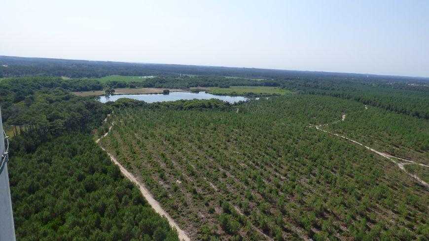 L'étang de Moïsan, vu du sémaphore de Messanges