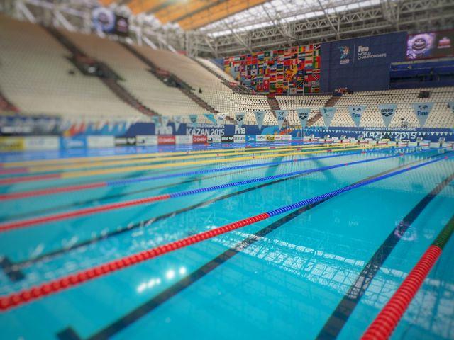 Retour en images sur les mondiaux de natation