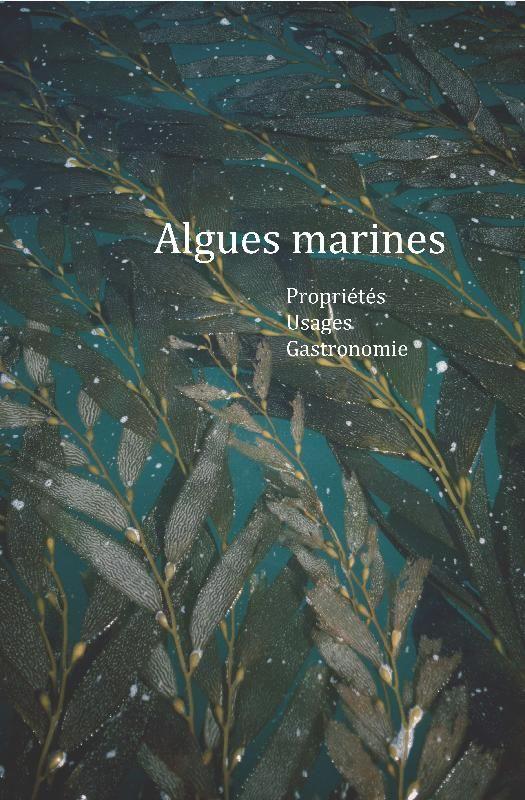 Algues marines