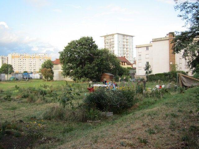 Les jardins sauvages d'Audra à Colombes