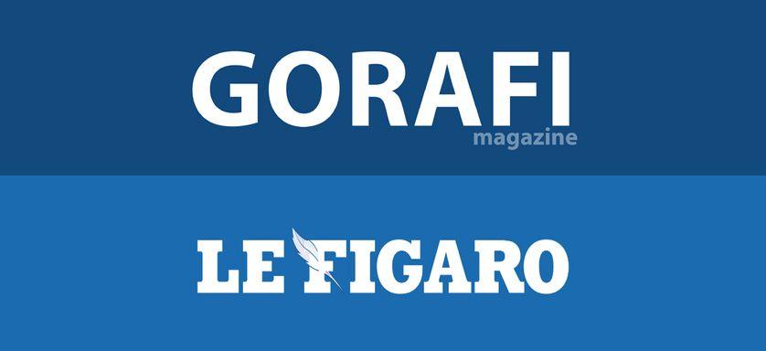 Figaro ou Gorafi ?