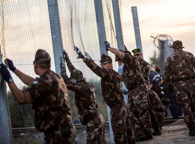 Des agents hongrois installent des clôtures barbelées le long de la frontière