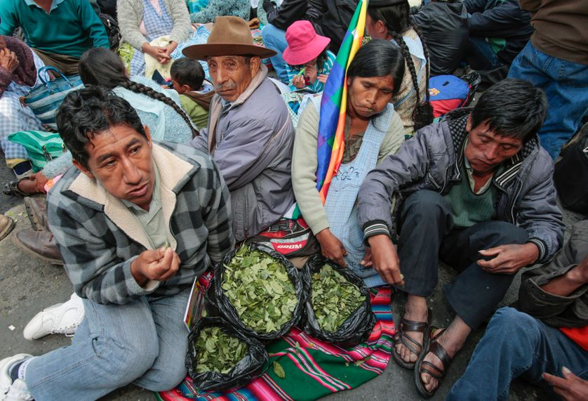 Coca leaf growers chew their produce during a rally to demand the decriminalization of the coca leaf in international convention