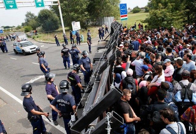 Migrants à la frontière entre la Hongrie et la Serbie, village d'Horgos, 15 septembre 2015
