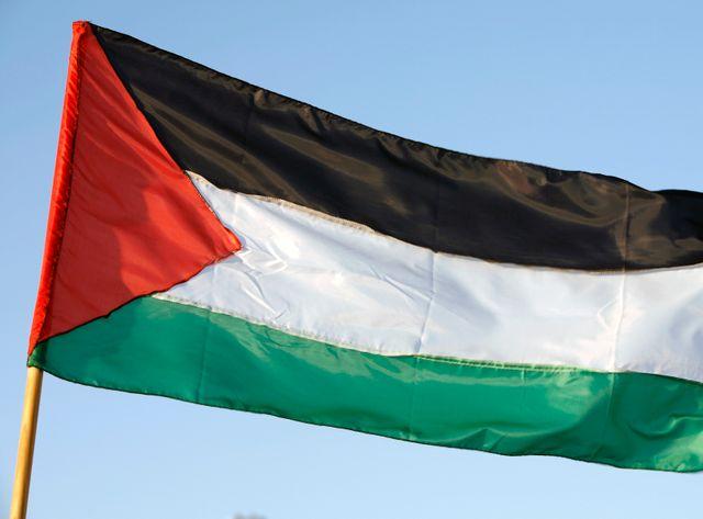 L'Etat de Palestine est reconnu par plus de 130 pays mais n'est pas encore membre à part entière de l'ONU