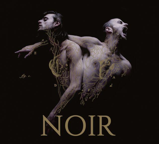 Noir - Heymoonshaker