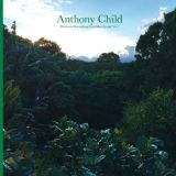 CD Antony Child Electronic Recordings from Maui Jungle