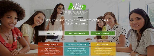 Capture d'écran de la page d'accueil de l'ADIVE, Agence pour la Diversité Entrepreneuriale