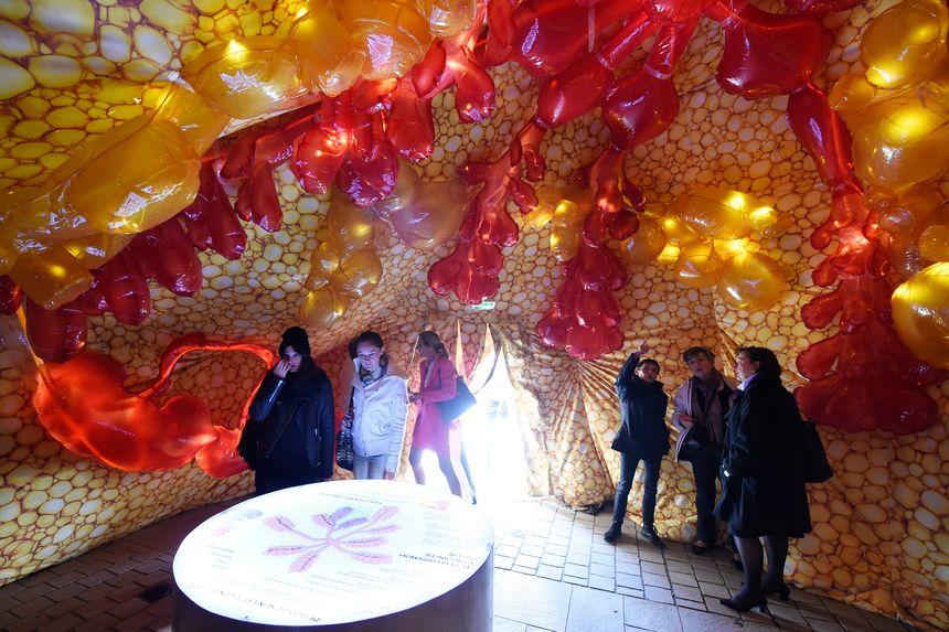 À l'intérieur de la structure gonflable, des sphères jaunes et rouges.