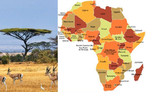 Afrique_603x380