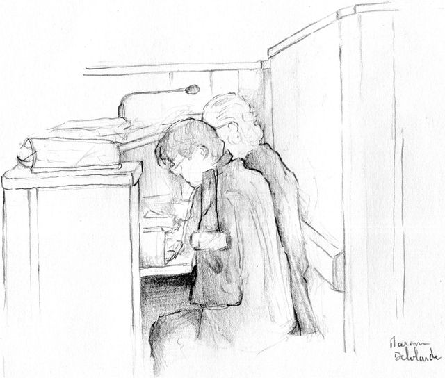 Les avocats de la défense par Maxime Delalande