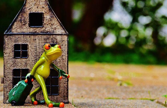 Quitter la France grenouille