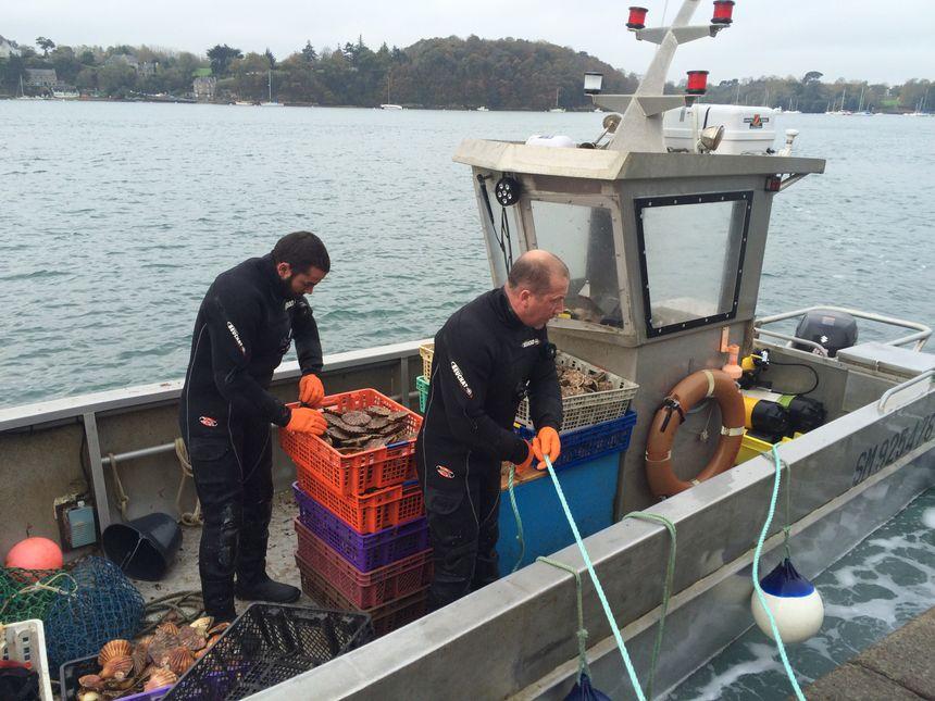 L'équipage prêt à débarquer les coquilles