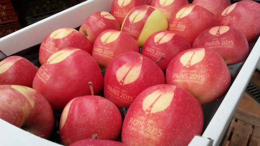 """Les pommes """"marquées"""" de Moselle à la COP 21."""