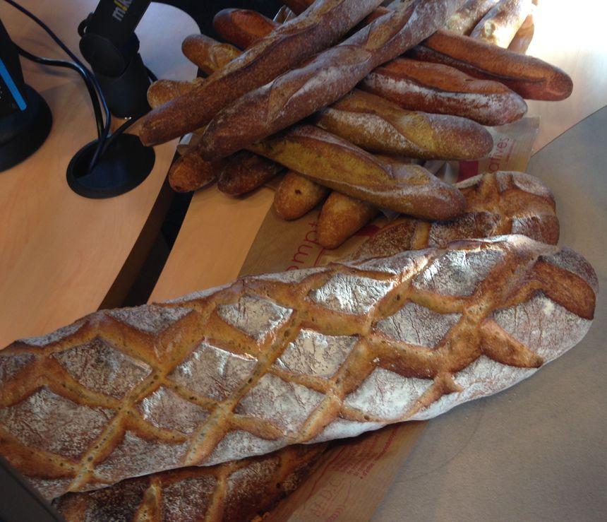 Les ficelles curry, ail, paprika, cêpes ... et le pain Polka (pain pour fondue)