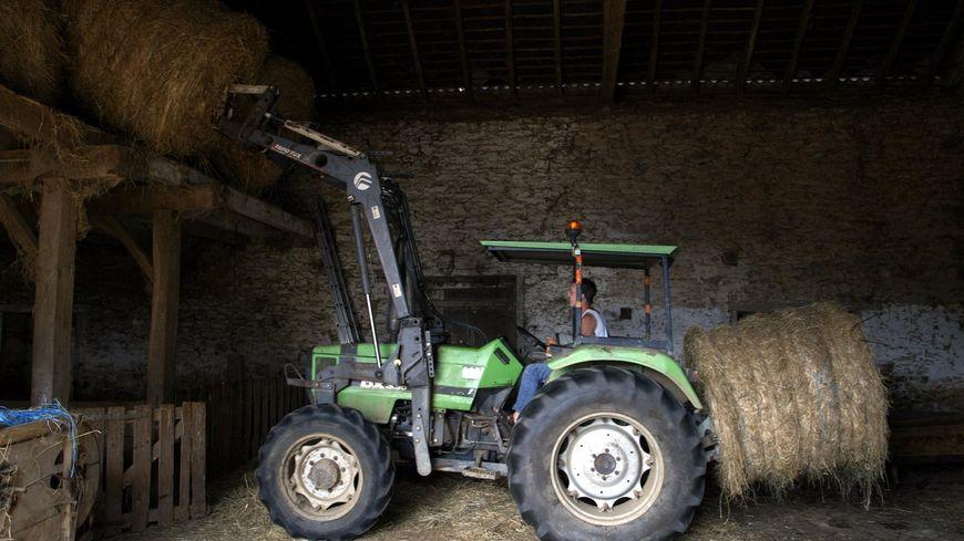 Plus de 30% de pertes fourragères, selon la Chambre d'Agriculture