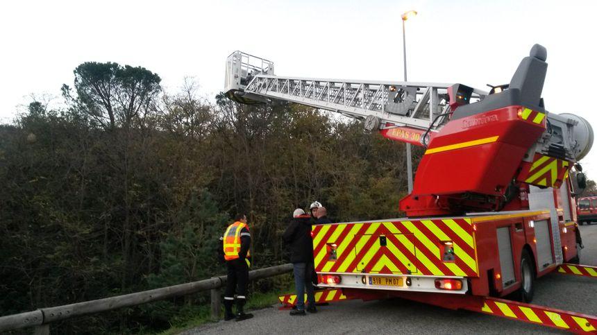 3 nids de frelons asiatiques détruits en 24h par les pompiers de l'Ardèche