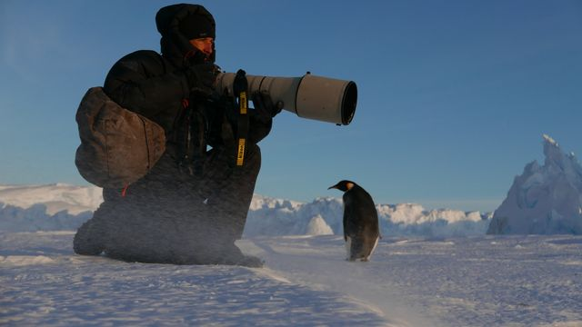 Vincent Munier en Terre Adélie pour la Wild-Touch Expeditions Antarctica