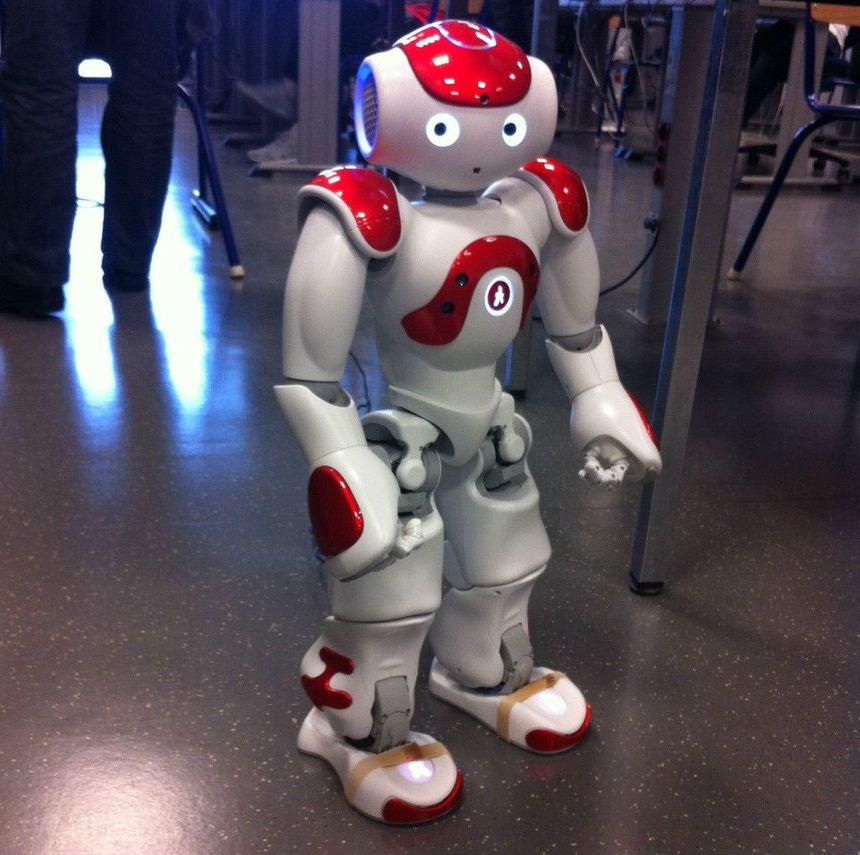 Nao, robot humanoïde utilisé en BTS Informatique et Réseaux