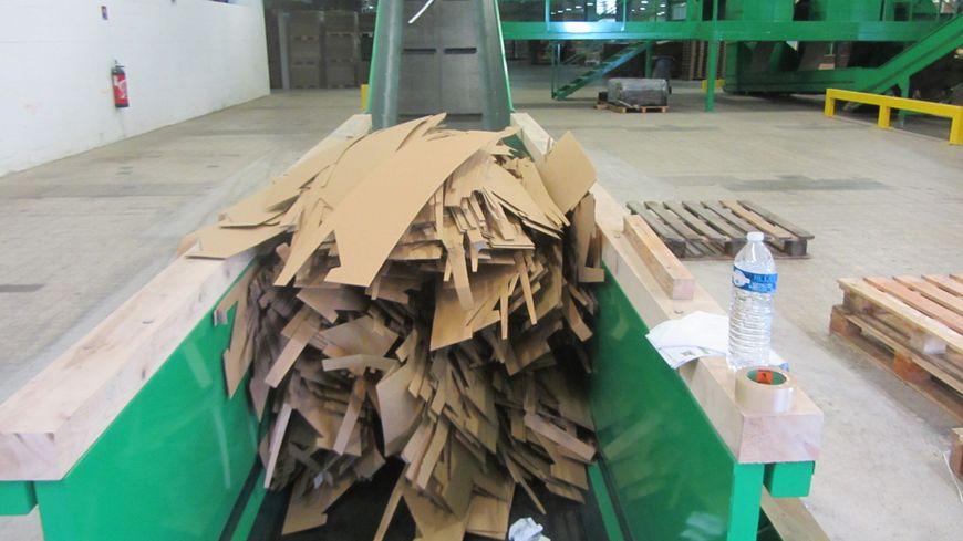 Idem est la première entreprise à se lancer dans la ouate de carton.