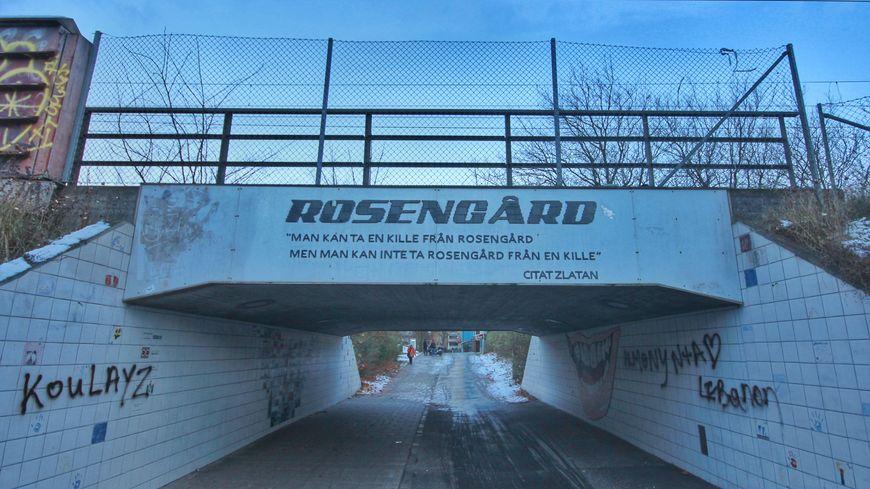 Tu peux sortir quelqu'un de Rosengard mais tu ne peux pas sortir Rosengard de qu