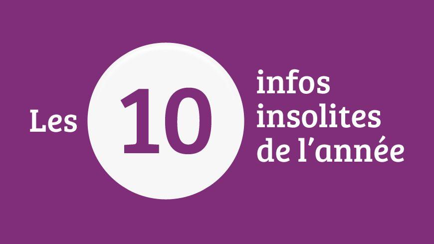 La rétro 2015 des infos insolites sur francebleu.fr