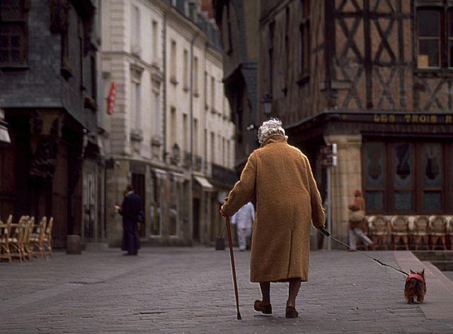 Une personne âgée avec son Yorshire