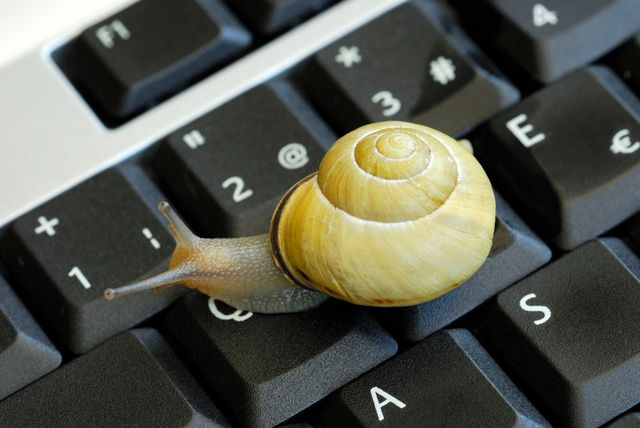 Le slow web ou comment prendre le temps de réfléchir sur l'actualité