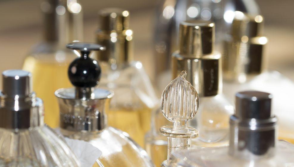 L'urine Insolite Parfum Dans Animale Du De 2EIH9D