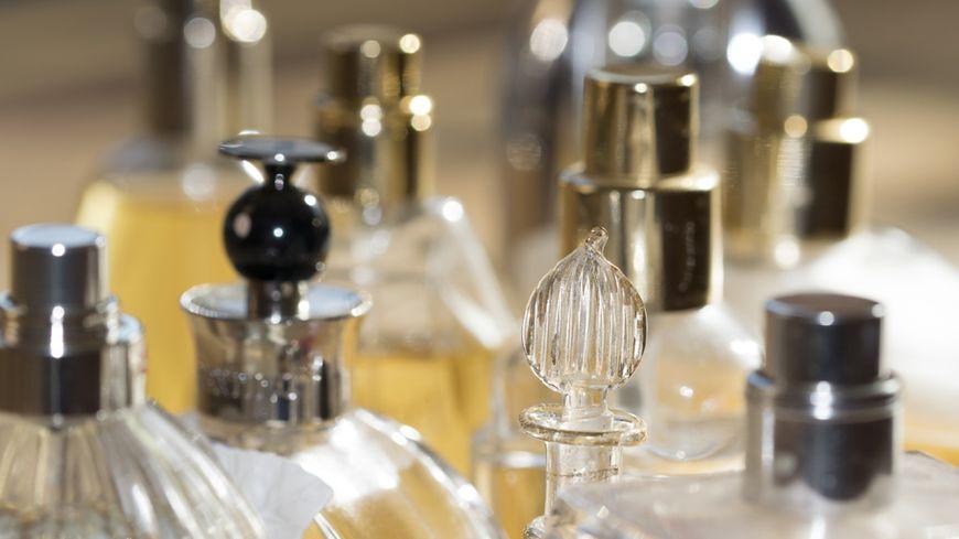 L'urine Insolite Animale De Dans Parfum Du cA5R4jq3L