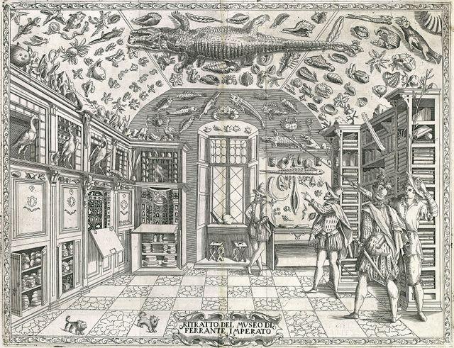 Cabinet de curiosité de Ferrante Imperato (1599)
