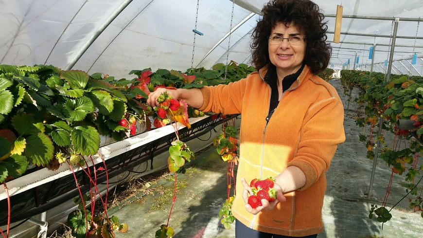 Patricia Rebillou est productrice à Cendrieux.