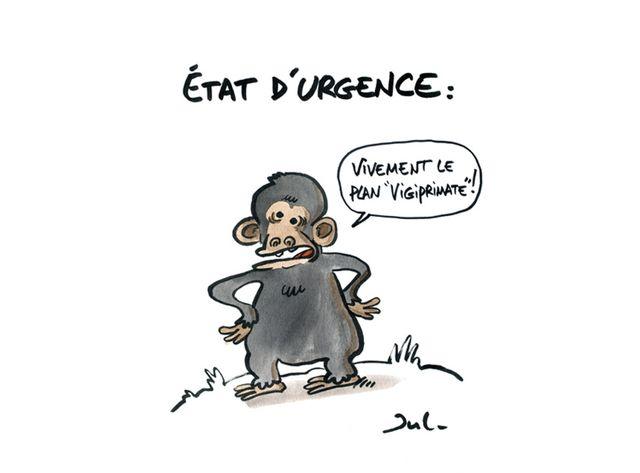 Jul vend un dessin pour récolter des fonds pour les grands singes