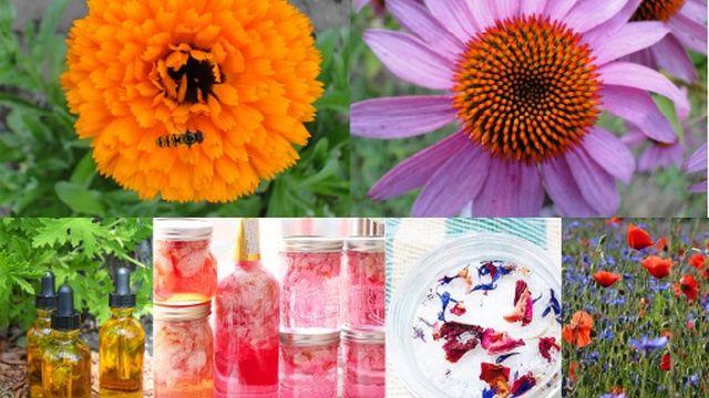 fleurs et cosmétiques