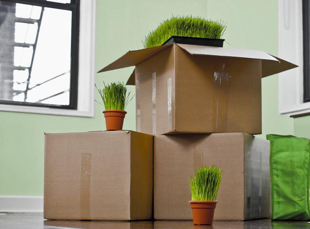 "Déménager avec des cartons recyclés avec l'association ""Carton Plein"""