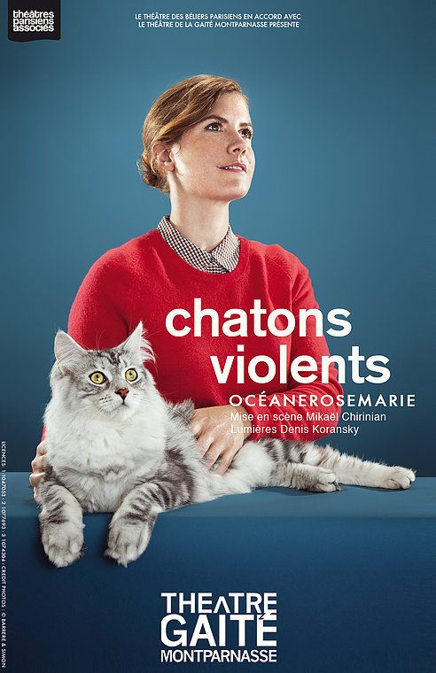 Chatons violents - Océanerosemarie