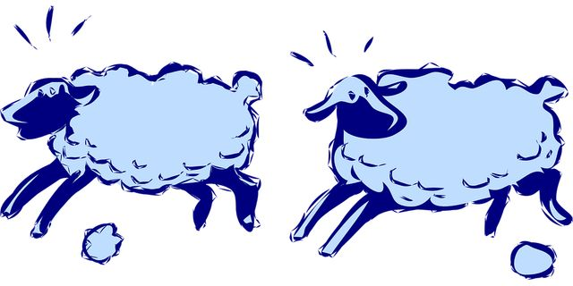 Insomnies : compter les moutons