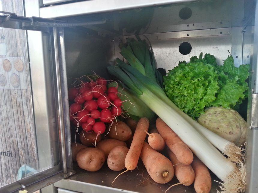 Les légumes poussent à quelques mètres du distributeur