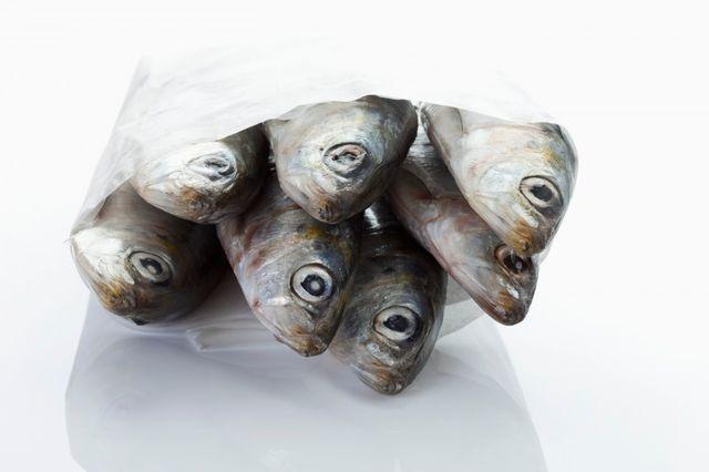 Sardines emballées dans un papier ciré blanc
