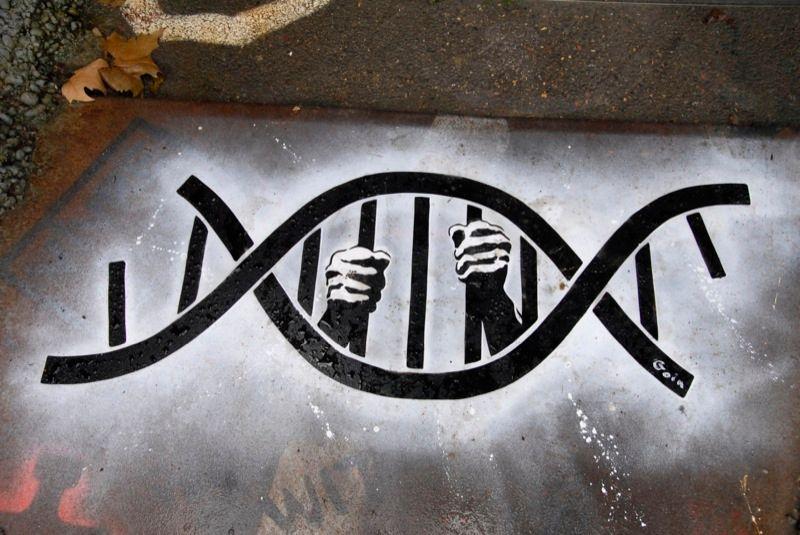 """Graffiti de l'artiste Goin sur la société """"23andMe"""""""