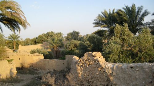 Retours à Palmyre (4/5) : De Zénobie à nos jours / Deuxième partie : Corinne Royer