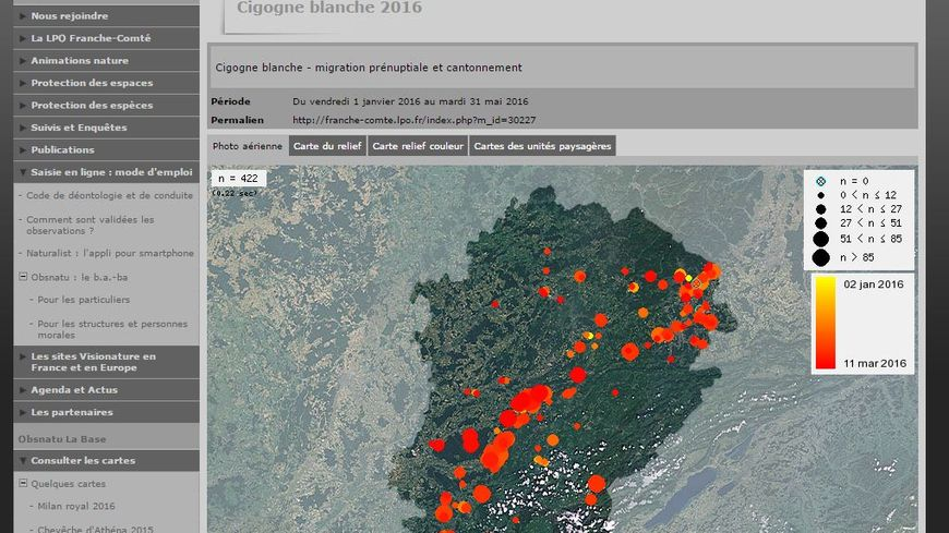 Grâce à Obsnatu vous pouvez aider à répertorier les cigognes en Franche-Comté.