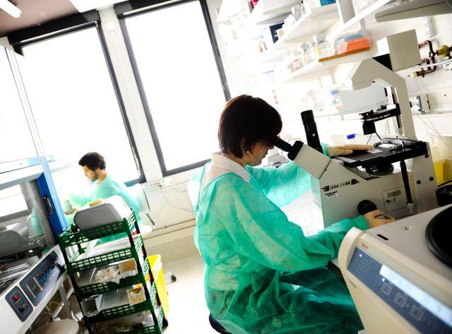 En 2011, des chercheurs de l'Institut Pasteur travaillent sur le virus du Sida
