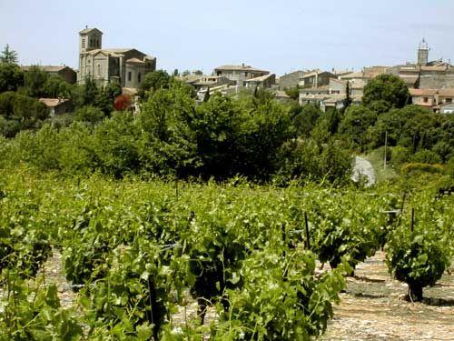 Les vignes de Saint-Christol