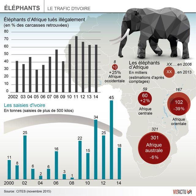 ►►►Le Kenya va brûler plus de 100 tonnes d'ivoire, un record