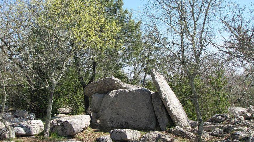 Un dolmen dans l'environnement ardéchois