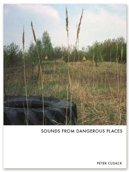 Sounds From Dangerous Places (ReR Megacorp)