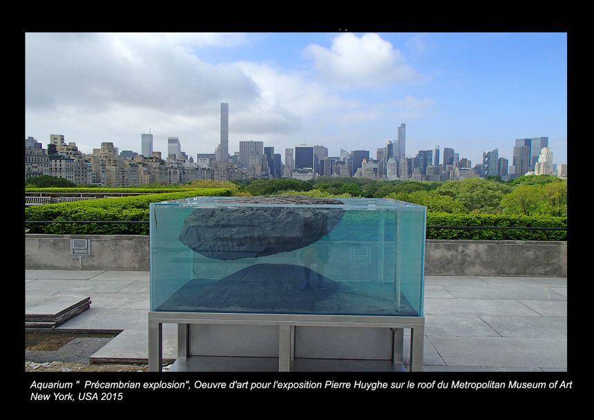 Aqua Art Design a collaboré une trentaine de fois avec l'artiste Pierre Huyghe