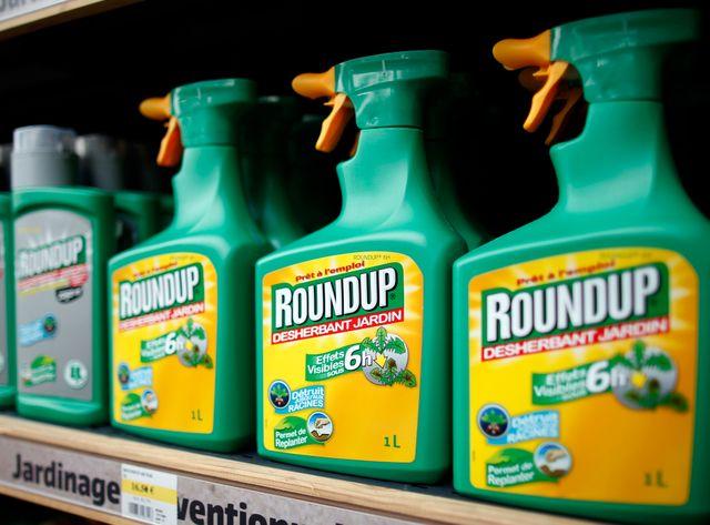 Le glyphosate est la molécule active du Roundup de Monsanto